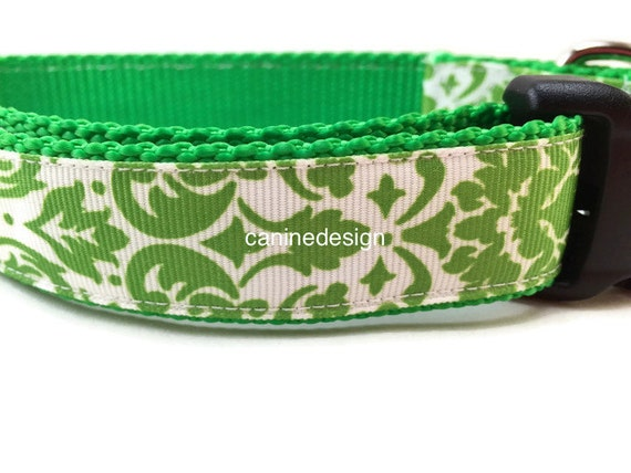 Dog Collar, Lime Green Damask, 1 inch wide, adjustable, quick release, metal buckle, chain, martingale, hybrid, nylon