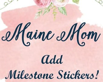 Milestone Stickers Made To Match Your Monthly Bodysuit Shirt Sticker Set Baby's Firsts