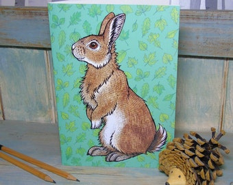 A5 Bran the Rabbit Illustration Journal ~ Notebook with 48 Lined Pages