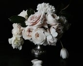 New Large Scale Dark Floral Modern Flower Photography Large Scale Fine Art Photography