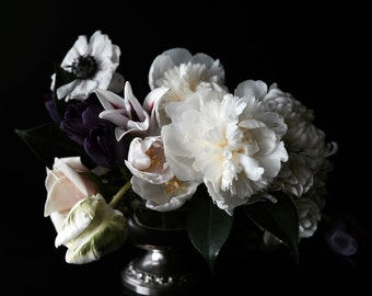 New Large Scale Dark Floral Modern Flower Photography Large Scale Fine Art Photography