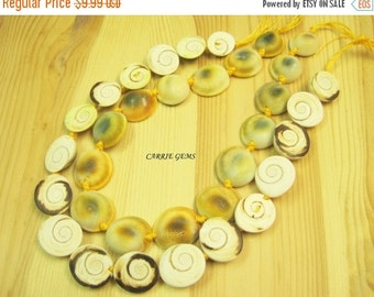 20% OFF ON SALE Shell Graduated Beads 16mm-20mm