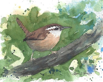 Carolina Wren Watercolor Painting - Fine Art Archival Print - Signed Giclée - Limited Edition Bird Art by Laura D. Poss