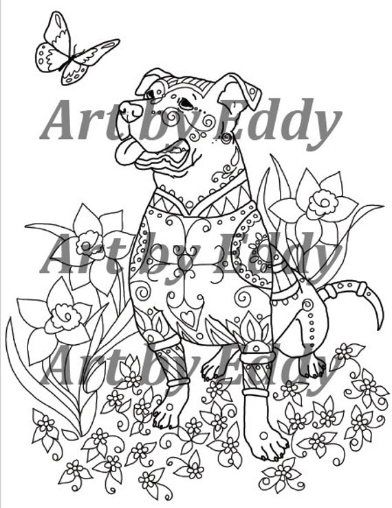 Art Of Pibble Coloring Book Volume No 1 Physical Book A