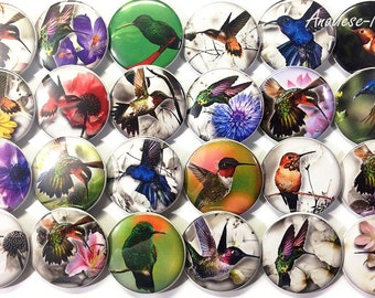 "Hummingbird Magnet, 1"", 1.5"", Button Magnet, Hummers, Hummingbird, Bird Button, Hummingbird Party Favors, Floral, Spring Magnet, Bird Magnet"