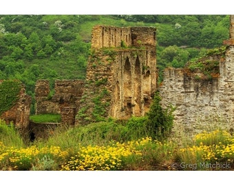 Fine Art Color Landscape Photography of Rheinfels Castle Ruins and Wildflowers in the Rhine River Valley in Germany 2