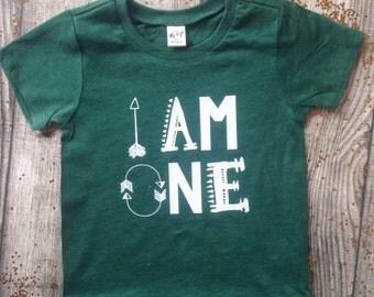 I am One Birthday Shirt First kids birthday shirt boy girt birthday shirt birthday tshirt kids birthday shirt birthday Arrow hipster shirt