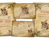 Alice in Wonderland Wedding invitation - Mad hatter - Wedding Invitation - Printable Wedding Invitation Suite - Wedding Invitation Set PP50