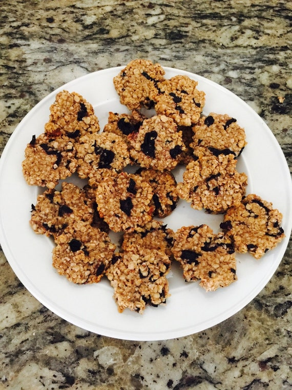 Organic Blueberry Coconut Oatmeal Delights 1 Doz.