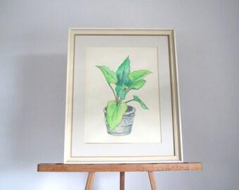 Vintage watercolor/ mid century artwork of potted plant/ boho decor/ botanical original