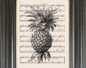 Pineapple printed on music or dictionary page Dictionary art print Wall decor Sheet music print Digital art print Kitchen art Item No 2211