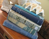 Vintage SEA Themed Book Collection, Shades of Blue, Hard Copies BEACH Decor, View Photos With & Without Dust Covers, Charming for Guest Room