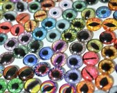 Glass Eye Overstock Wholesale Lot 40 Cabochons in Random Designs - Choose Size 6mm 8mm 10mm 16mm 25mm 30mm - For Taxidermy or Jewelry Making