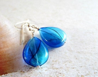 Blue Teardrops-Hollow Blown Glass Earrings-Sterling Silver