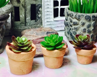Miniature Flowerpots ~ Set of 3 ~ Tiny Terra Cotta Pots ~ Includes plant ~ .5 to 1 Inches ~ Fairy Garden Miniatures ~ Terrarium ~ Dollhouse