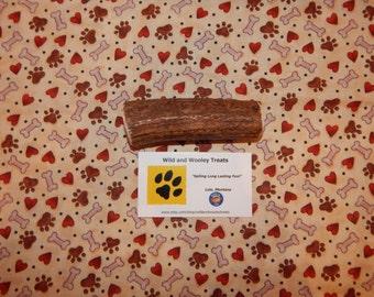"Organic Medium Elk Antler Dog Chew ""Made in Montana"" (Lot C35)"