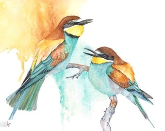 Bee Eater watercolour painting print, BE10516, A3 size print, Bee-eater print, bee eater painting, bird watercolour painting