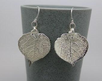 Sterling Silver Aspen Leaf Earrings
