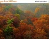 SALE 20% OFF Autumn Foliage and Rolling Hills, Nature Photography, Landscape, Fall Color, Fine Art Photograph, Art Print, Home Decor, Zen, R