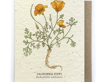 California Poppy Greeting Card - Plantable Seed Paper - Blank Inside