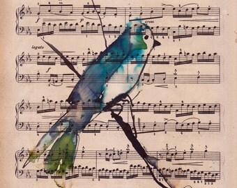 Allegretto bird watercolour ink painting on antique music paper ORIGINAL ART