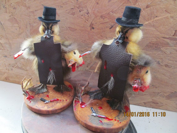 Taxidermy Duckling Quack The Ripper Dispicable Display