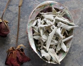 White Sage, Sage Incense, Loose White Sage, Sacred Smoke, Altar Space, Buffalo Sage, Space Clearing, Purification Smudge, White Sage Leaves