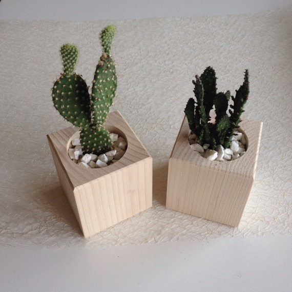 Wooden planters set o f 2 cactus planter raw wood for Wooden cactus planter