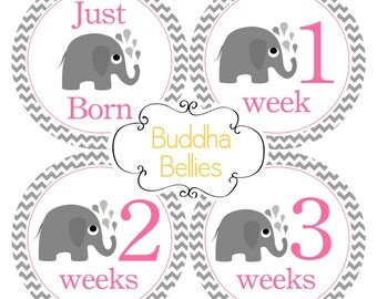 Baby Girl Month Stickers Baby Monthly Stickers Elephant Baby Stickers Elephant Baby Shower Gift Baby Milestone Stickers Baby Girl Decals