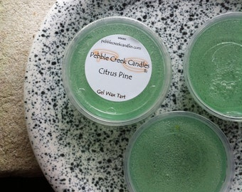 Wax Tarts Melts Citrus Pine Scented Gel Car Freshener Orange Evergreen Aromatherapy Candle Inspired Wax for Warmers in Dorm Room Decor