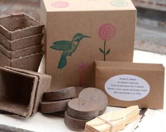 Hummingbird Garden, Heirloom Garden Seed, Flower Garden Collection, Gardening Kit, Flower Seeds for Nectar Garden