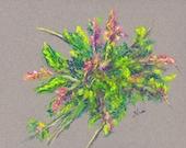 Decorative Pastel Delicate Oak Blossom Original Botanical Art by Niki Hilsabeck