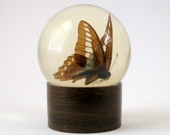 c1975 Natures Gems Butterfly Glass PAPERWEIGHT by Educational Embedments 3 1/2 in Dia Authentic USA Patented Vintage Excellent Condition