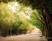 Paris travel photos, Paris garden photos, Luxembourg Garden, Fall Foliage, Family wall art, Morning light images, Paris wall art, under 50