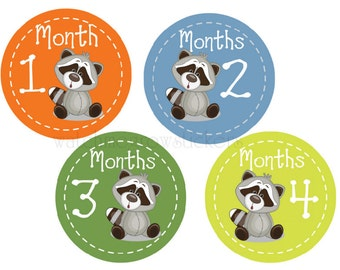 Baby Month Stickers Monthly Stickers Baby Shower Gift Baby Monthly Stickers Milestone Stickers