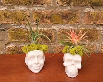 Skull or Head Cermaic Air Plant Decor - A Unique Birthday or Hostess Gift