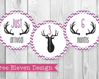 Deer (Purple) PRINTABLE Monthly Stickers