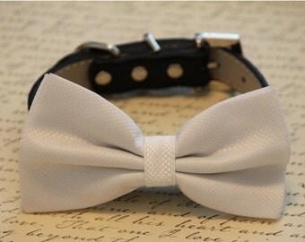 Black and White wedding dog collar, Black Dog Bow Tie with high quality black leather collar, Black Wedding accessory
