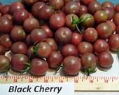 Black Cherry Heirloom Tomato Seeds Non GMO