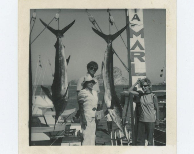 Vintage Snapshot Photo: Marlin Catch, c1950s-60s (68496)