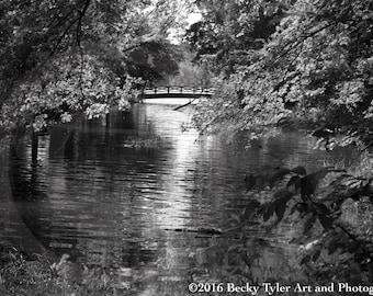 Minnehaha Creek, Minneapolis, Fine Art Photo Print