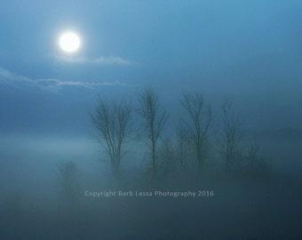Sunrise, Blue, 11x14 print, foggy, morning, photographic print, Barb Lassa