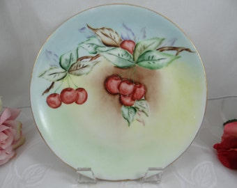c1890s Vintage Hand Painted Hutschenreuther Selb Bavaria Cherry Plate - Stunning