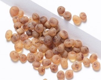 50 pcs of Baltic Amber loose beads