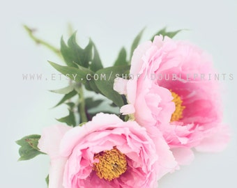 Fine Art Photograph, Pink Peony, Flower Photography, Pink Floral Art, Spring Flowers