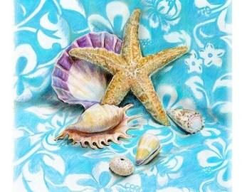 Blue Beach Shells