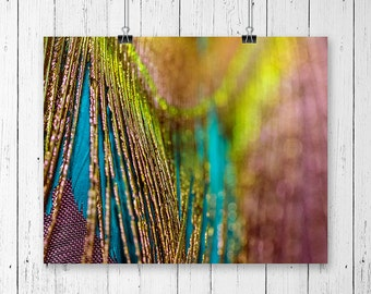 Peacock Feather Art Colorful Wall Art Teen Girl Room Decor Gift for Her Gallery Wall Prints Boho Chic Decor Macro Photography Feather Print