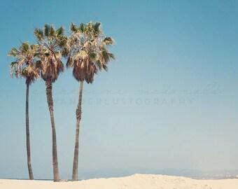 Venice Beach Photography, California Photograph, Los Angeles print, palm tree wall art, Surf Decor, Boho Style, Pastel Large Print