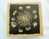 Club Scrap Limited Addition College Type Rubber Stamp  of Flower with Colored Background of your Choice FREE US SHIPPING