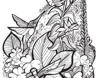 Coloring Book Page • Hummingbird & Dragonfly